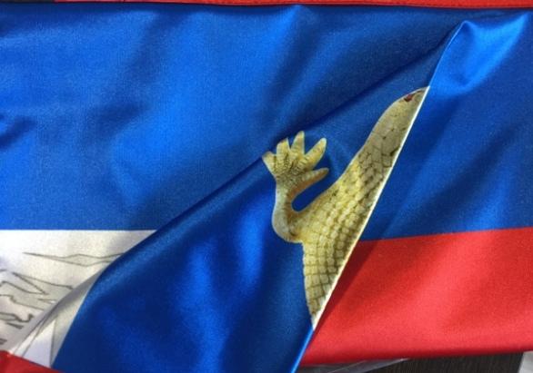 Печать флагов с логотипом